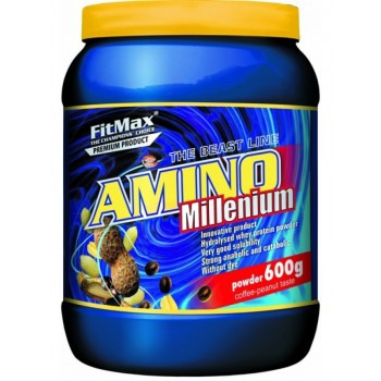 FitMax Amino MILLENIUM 600 грамм