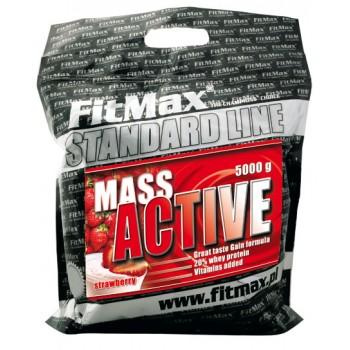FitMax Mass Active 5000 грамм